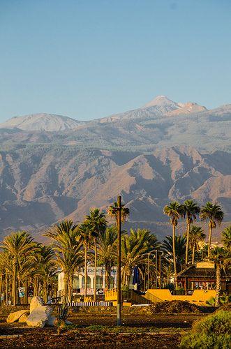 Tenerife. Canary Island. Spain.