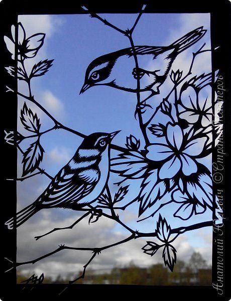 """Всем добрый день! Вашему вниманию очередная открытка с птичкой:)) Пеночка - весеничка. Немного информации из """"Вики"""". - Пе́ночка-весни́чка (лат. Phylloscopus trochilus) — певчая птица из семейства пеночковых (Phylloscopidae). - Описание: Пеночка-весничка достигает в длину от 11 до 13 см, размах крыльев составляет от 17 до 22 см. Вес пеночки-веснички составляет от 8 до 11 г. Внешне её трудно отличить от пеночки-теньковки, однако их пение существенно отличается. Верхняя сторона пеночки-вес..."""