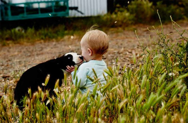 Doesn't get much cuter than this. A moment of farm life captured by Ted O'Donnell for the #BBProvenanceProject.   We'll be featuring some of the best images from each farm story in an exhibition called The Honesty Box next month in Sydney. Stay tuned for details.   The Beerenberg Provenance Project is a project in celebration of rural farmers and their produce across Australia. We believe in supporting Australian farmers. For more on #Woodside and the #BBProvenanceProject