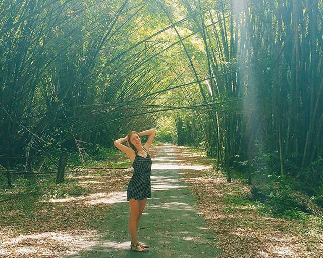 Hidden Gems in Trini: The #Bamboo Cathedral 🎋🎍#paulinaontheroad #trinidadandtobago #beautifulplaces #bestdiscovery #wearetravelgirls #trinidadytobago #caribbeanlife #caribeando #caribbeansea #trekkingday #hikingtrip #hikinggirl #trekkinglife #bamboozle #bamboocathedral #sharethecaribbean