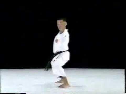Jitte Shito Ryu