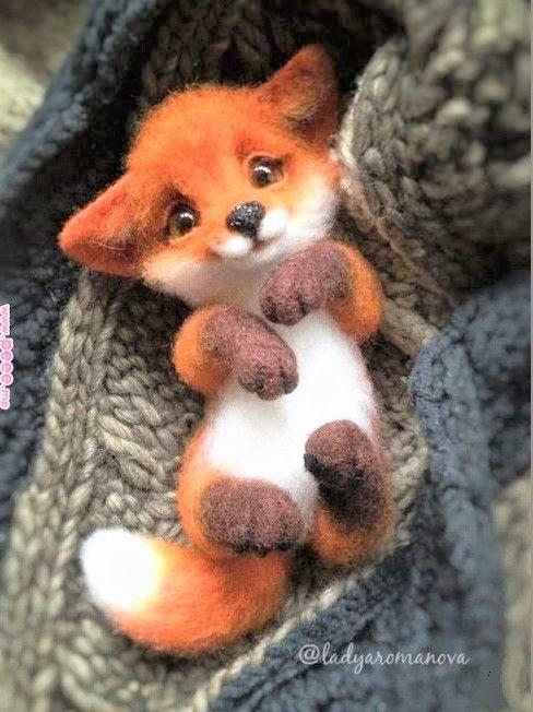 #wild #nature #renard #fox #baby #mignon