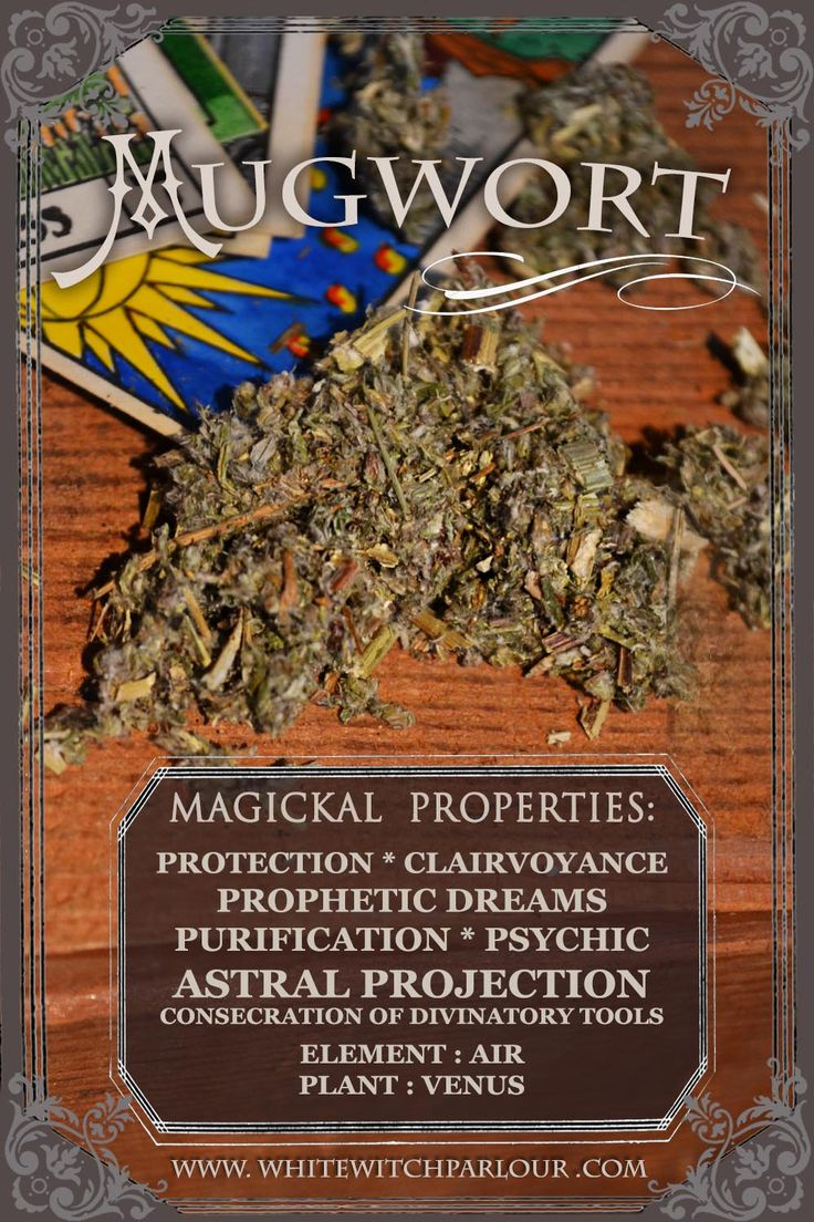 MUGWORT, WITCH, HERB, APOTHECARY, book of shadows, divination, concecration, psychic, tarot,  AVAILABLE HERE: http://www.whitewitchparlour.com/product-p/mug1.htm