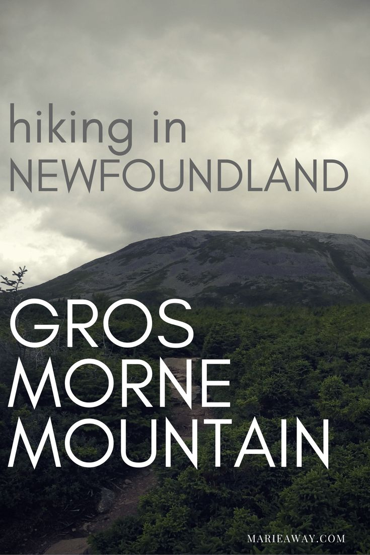 hiking-in-newfoundland