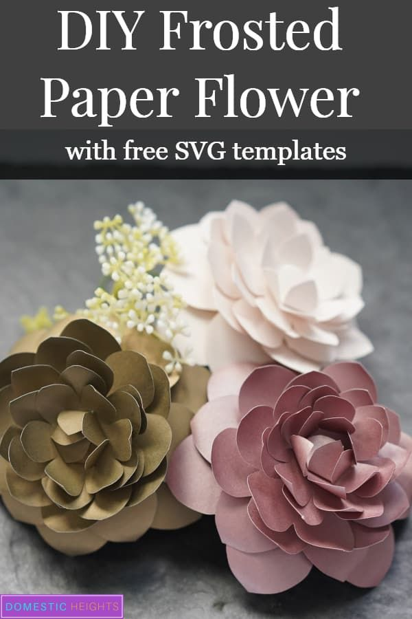 Diy Paper Camellia With Free Flower Template Domestic Heights In 2020 Free Paper Flower Templates Flower Template Paper Flowers