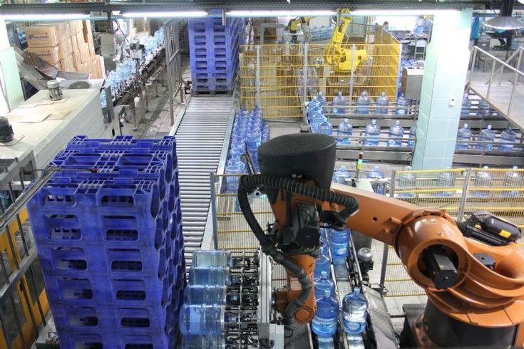 Paletleme Makinalarının Şirketteki Başlıca Rolü