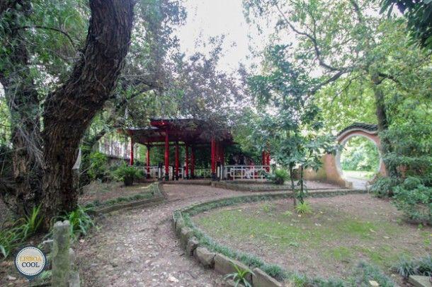 Lisboa Cool - Visitar - Jardim Botânico Tropical