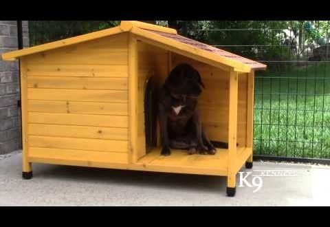 K9 Kennel Store – Tuscan Wood Dog House   Woodworkingguides.info