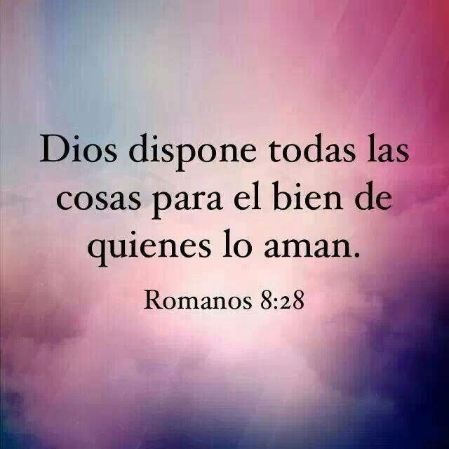 Romanos 8:28 Más que vencedores, Y sabemos que a los que aman a Dios, todas las cosas les ayudan a bien, esto es, a los que conforme a su propósito son llamados /Frases ♥ Cristianas ♥