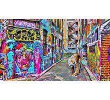 The Tiger in Rutledge Lane Photographic Print