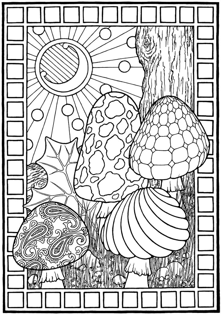 """""""Mushrooms,"""" from EQUINOX, A Coloring Book by Stephen Barnwell."""
