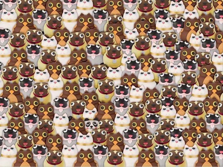 Find the panda...