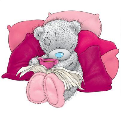 Серые мишки Тедди весной и на отдыхе