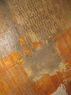 Remove carpet padding stuck on hardwood floors
