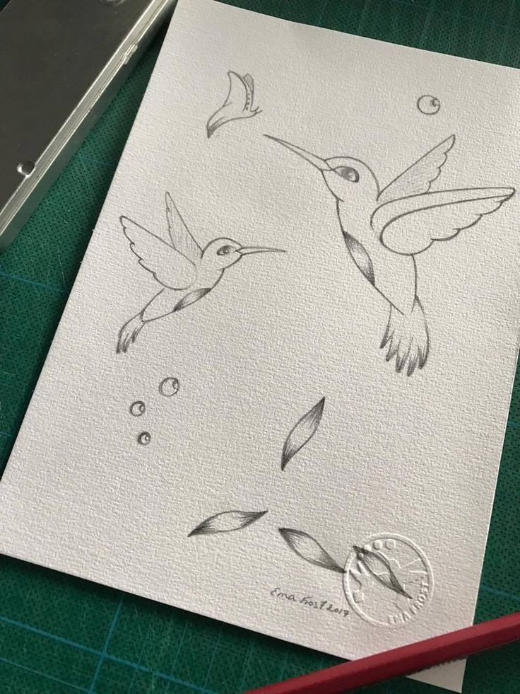 Frost Sketch Project #2 - Hummingbirds - Ema Frost