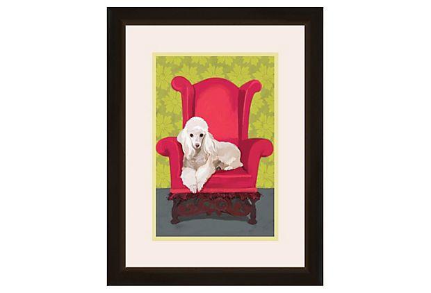 Relaxing Poodle on OneKingsLane.com @Kayla Brungardt