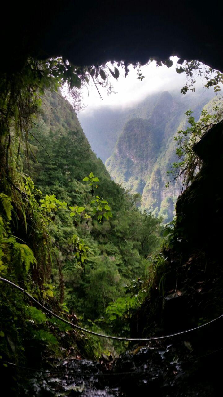 Caldeirão Verde, Madeira - Portugal. Den richtigen Reisebegleiter findet ihr hier: https://www.profibag.de/reisegepaeck/