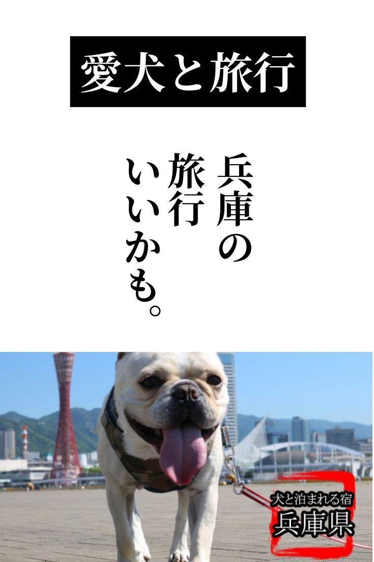 おすすめ旅行 関西 兵庫 愛犬と泊まる宿 飼い主も楽しむ10宿 2021 旅行 関西 兵庫 旅行