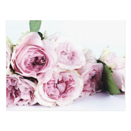 PEONY FLOWERS POSTCARD | Zazzle.com