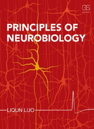 Principles of Neurobiology (Paperback) - Routledge