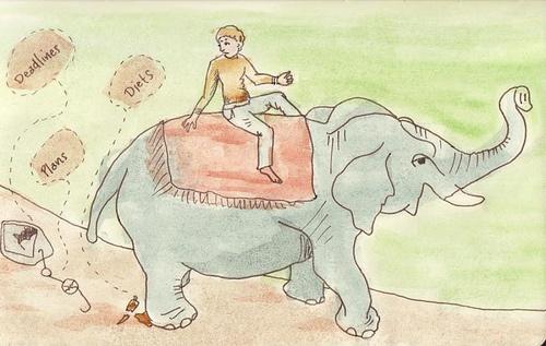 """Nuestra parte racional es un jinete que tiene que dirigir a la parte emocional, el elefante, por el camino adecuado para lograr nuestros objetivos.    Del libro """"Switch"""" de los hermanos Heath"""