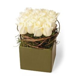 Congratulation flowers and gifts: Blanc