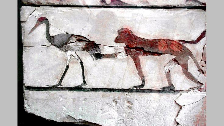 Decipherment of Egyptian hieroglyphs