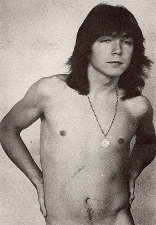 Consider, that Nude pictures of david cassidy simply