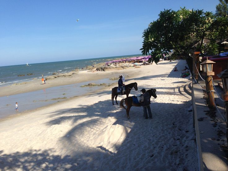 There is always horses to ride on the beach outside the Hilton Hua Hin Resort in Thailand