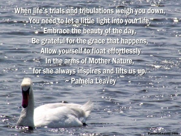 Quotes About Trial In Life: Best 25+ Mother Nature Quotes Ideas On Pinterest