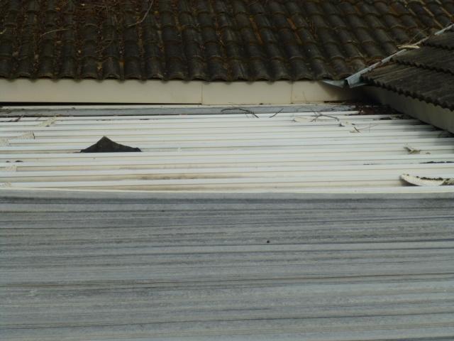 Metal Pan Roof Outdoor decor, Decor, Home decor