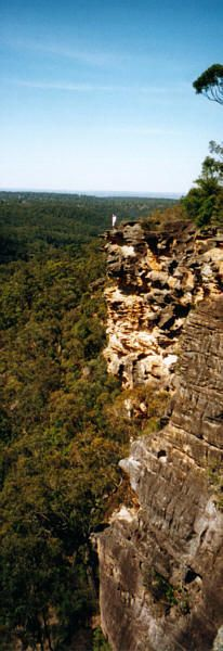 Bushwalking NSW - bushwalking tracks around Sydney and beyond