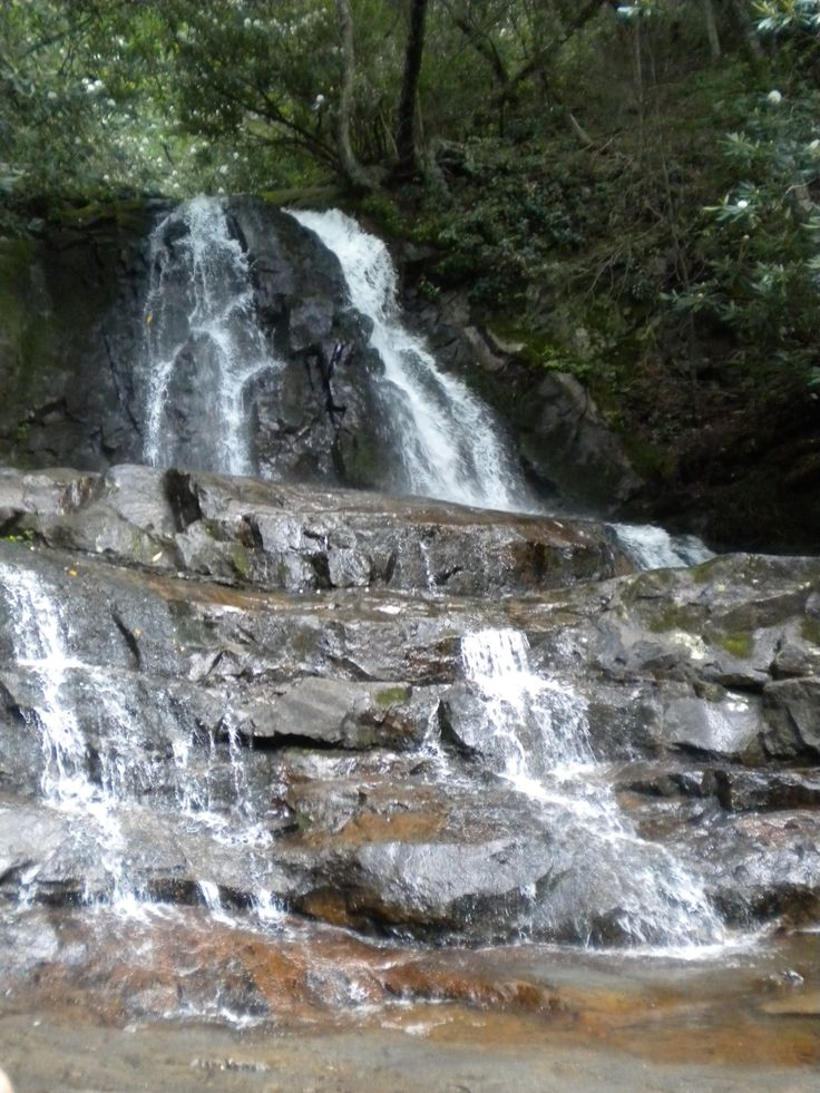 13 Best Hiking The Smoky Mountains Images On Pinterest