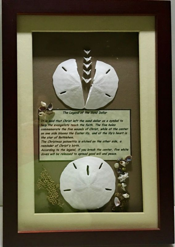 "Legend of the Sand Dollar Framed Shadow Box Artist Purchase 9"" X 13"" Wood"