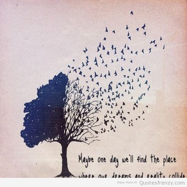 Inspirational Quote Red On Pinterest: Life Dreams Hipsters Tree Birds Quotes