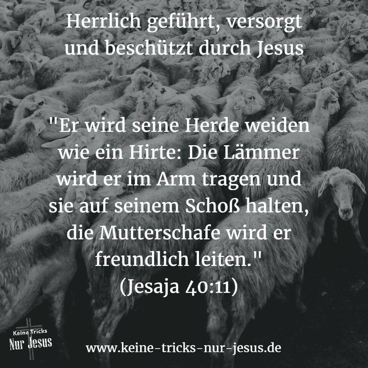 """Warum empfangen so viele """"Christen"""" nicht die herrliche Ruhe, die Jesus anbietet? Warum werden so viele """"Christen"""" von Ängsten, Krankheit, finanziellem Mangel, Sinnleere über Depression bis hin zu Hoffnungslosgkeit gequält? Antwort: Sie glauben nicht wirklich an all die herrlichen Zusagen von Jesus. Oder sie loben sogar die Krankheit oder den Mangel… unter Verkennung der Tatsache, daß sie damit den Teufel loben, denn von ihm kommt alles Schlechte; niemals von Gott."""