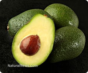 Seven undeniable reasons to eat avocado every day