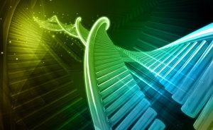 Semi-synthetic organism: Scientists create first living organism that transmits added letters in DNA 'alphabet'