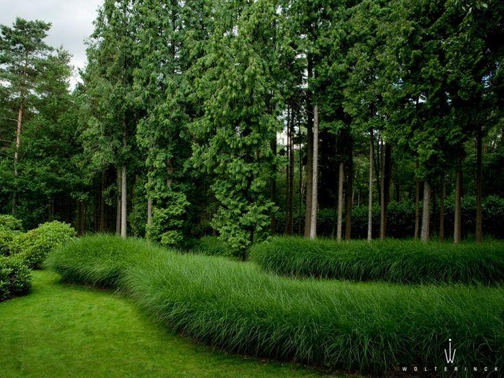 33 best images about voorbeeld tuinen on pinterest het for Voorbeeld tuinen kijken