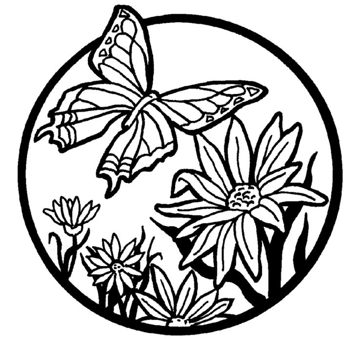 104 best Zomer - Kleurplaten images on Pinterest Coloring books - fresh coloring pages for nature
