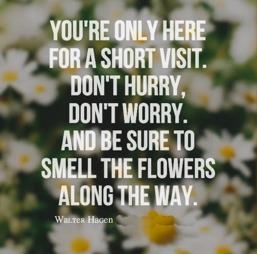 Take Time To Smell The Roses Quote: Walter Hagen Quotes. QuotesGram