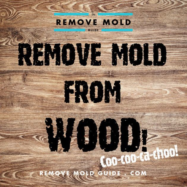 removing mold from unfinished wood (for my 1/2 bath & anything else I discover...)