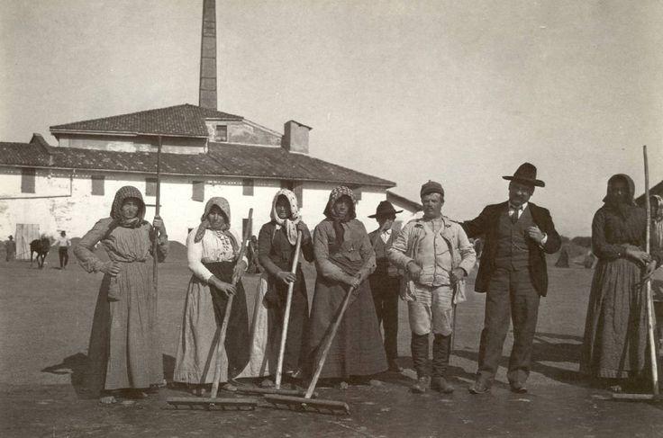 Gruppo di lavoratori in posa nell'aia della risiera