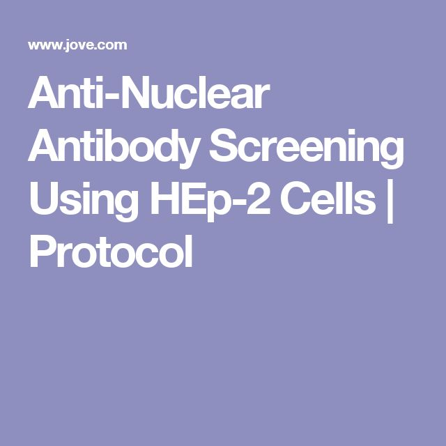 Anti-Nuclear Antibody Screening Using HEp-2 Cells | Protocol