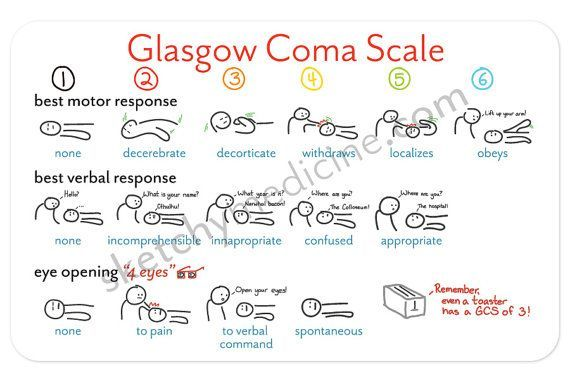 glasgow coma scale - Google Search