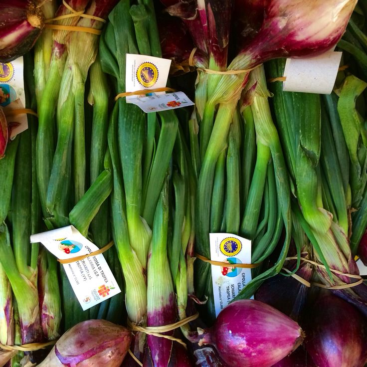 Purple and green: These fabulous, and beautiful, Cipolle Rosse di Tropea are an IGP product. In other words an official certification that these special onions are what they say they are and come from where they say they do. www.flavorofitaly.com