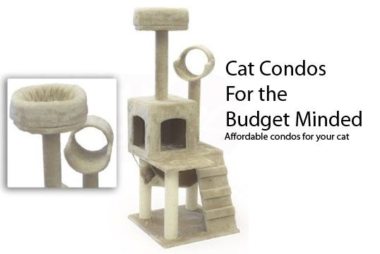Cat Condos That Wont Break Your Piggy Bank Cool