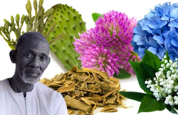 Dr. Sebi (Alfredo Bowman) is a pathologist, herbalist, biochemist, and naturalist who has a lot of experience healing people using herbs, organic foods, and alternative medicine. In some of his lec…                                                                                                                                                                                 More