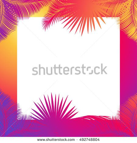 Exotic leaves Tropical frame with text space. Jungle forest frame Vector. Sunset palm tree leaf. Palm leaf silhouette Photo frame border Instagram. Tropical beach party. Instant photo date branch leaf
