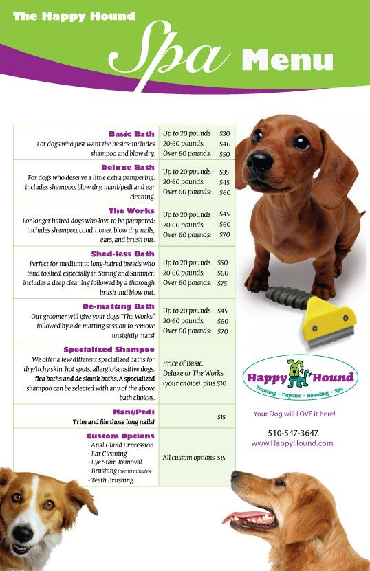 This is an example of what one of our a dog spa menus would look like. Owners can look it at this via our phone app or on our website. We can imagine that people who like to spoil their dogs would like this sort of service, especially if they are gone during most of the day. This way their dog is entertained and they can be happy knowing their dog is safe.